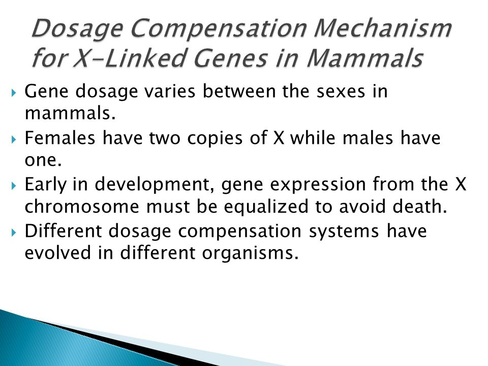 Dosage compensation and sex determination in