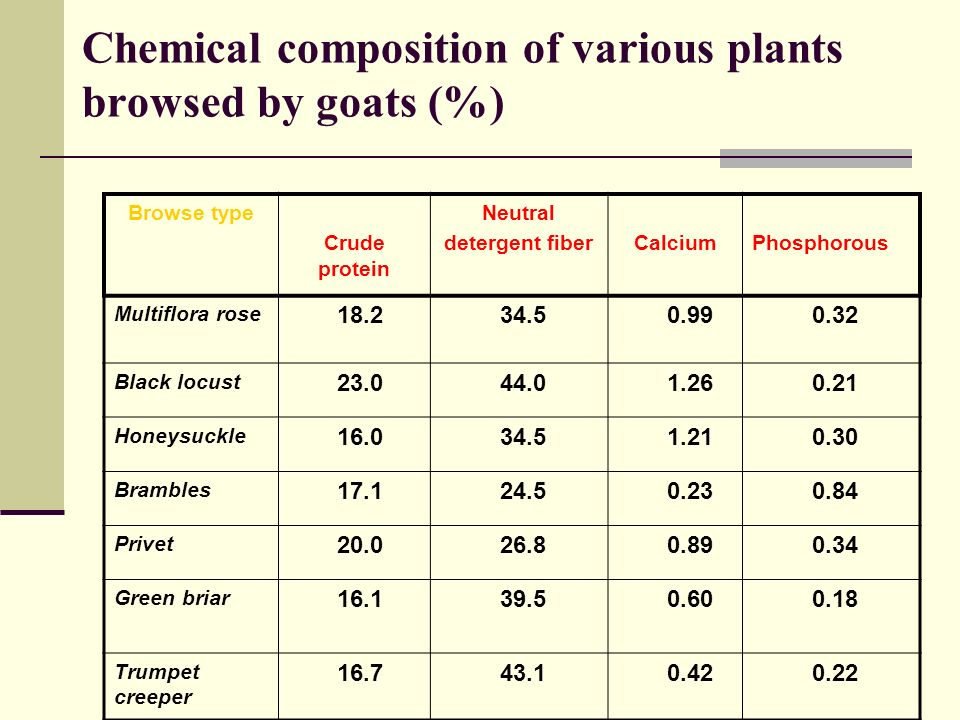 Plant Chemical Components : Forage considerations for the goat herd ppt video online