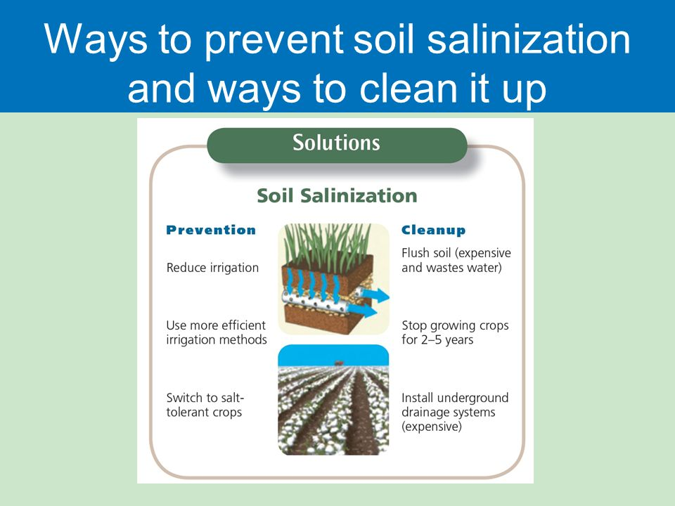 Food Soil And Pest Management Ppt Download