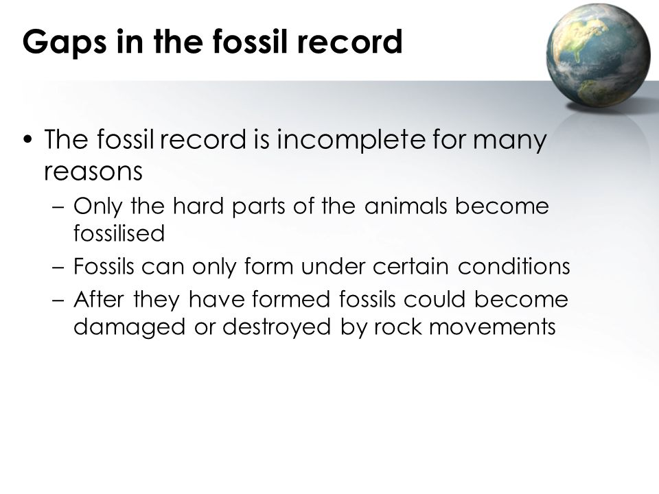 Gaps in the fossil record