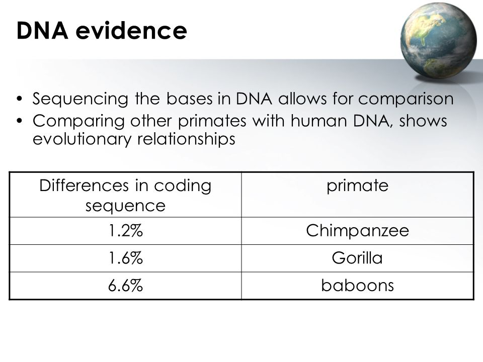 Differences in coding sequence