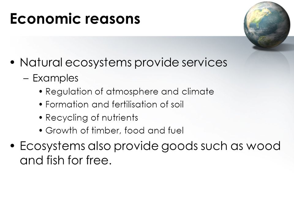 Economic reasons Natural ecosystems provide services