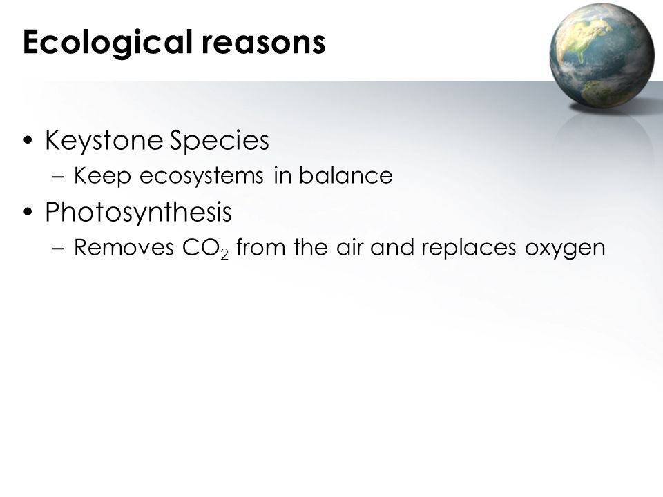 Ecological reasons Keystone Species Photosynthesis