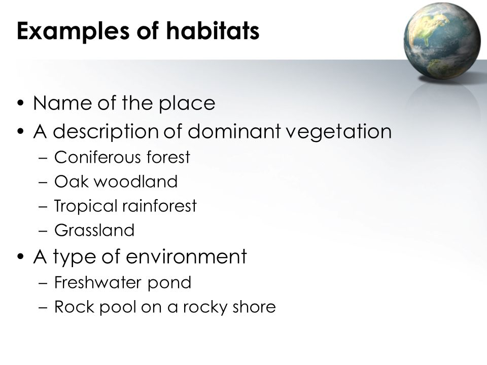 Examples of habitats Name of the place