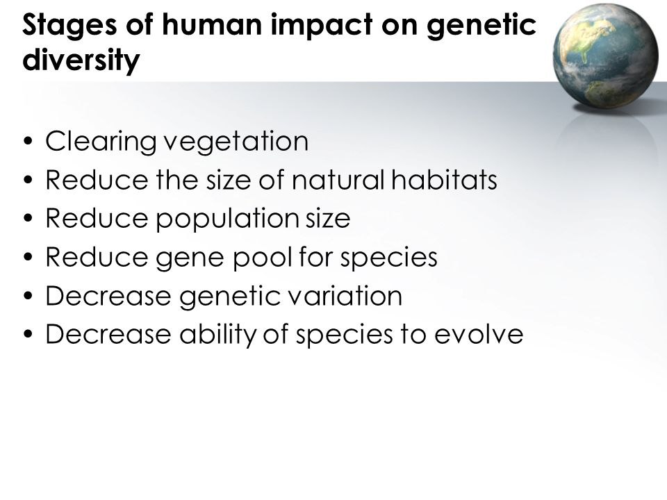 Stages of human impact on genetic diversity