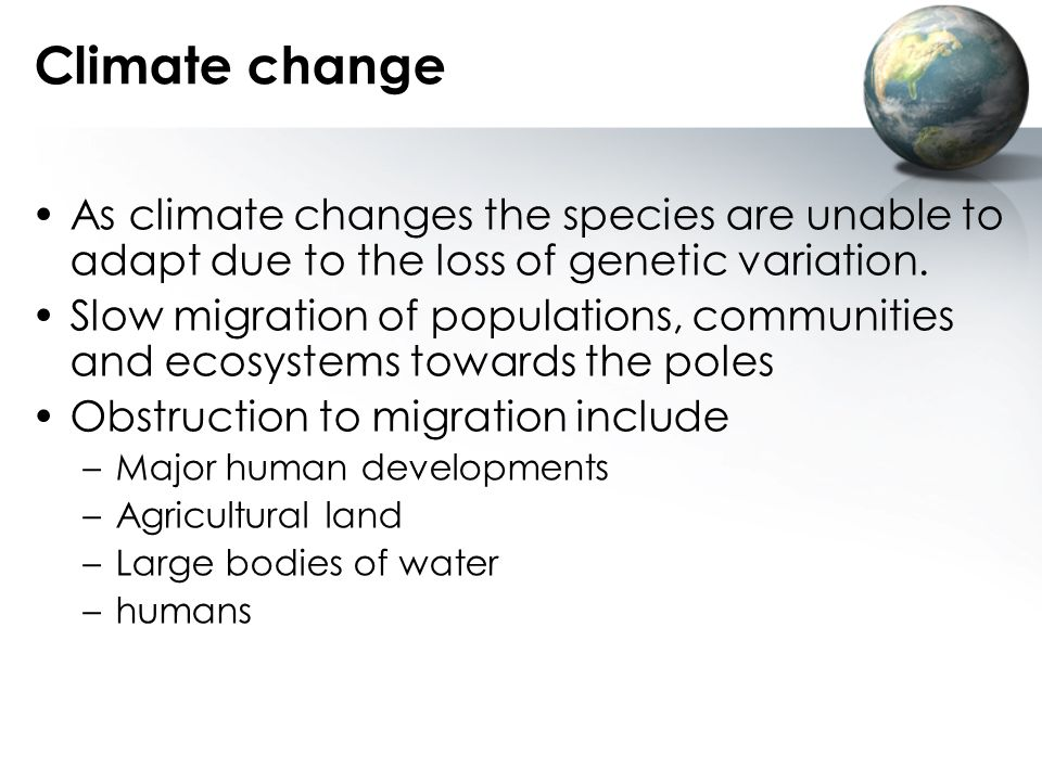 Climate change As climate changes the species are unable to adapt due to the loss of genetic variation.