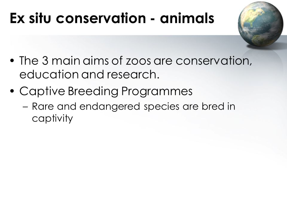 Ex situ conservation - animals