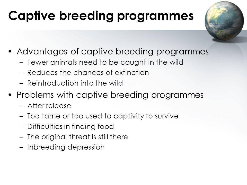 Captive breeding programmes