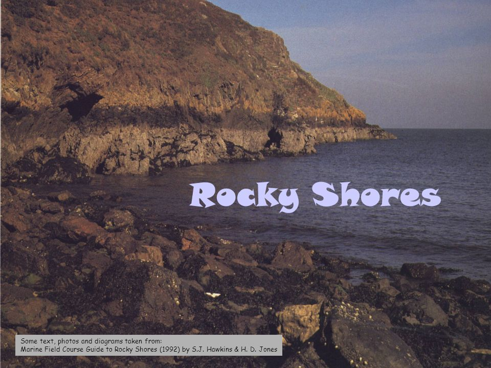 Rocky Shores Some text, photos and diagrams taken from: