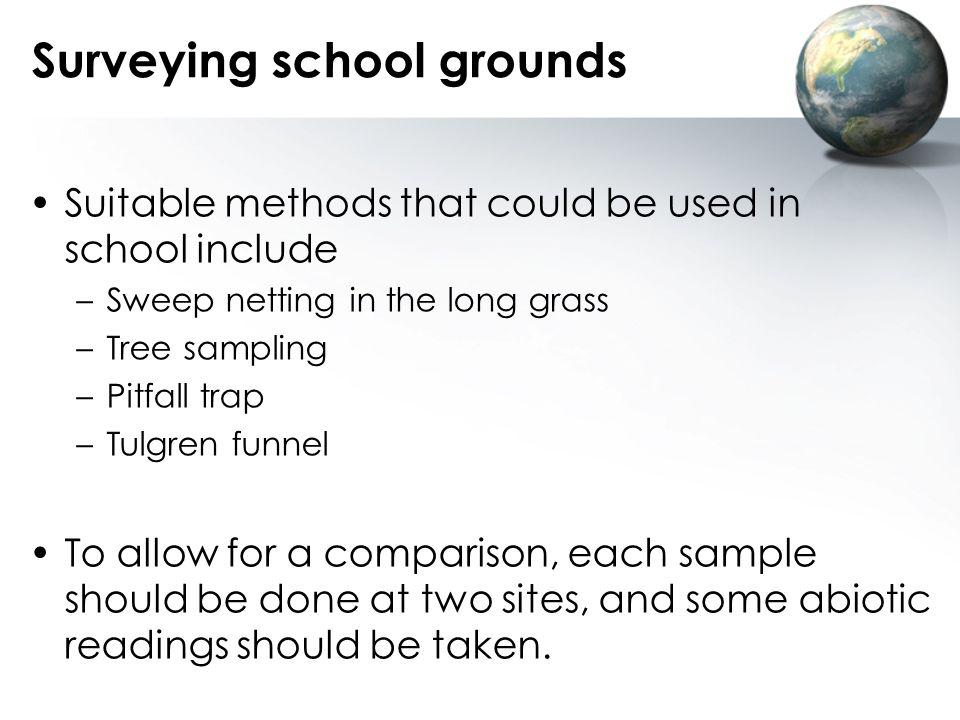 Surveying school grounds