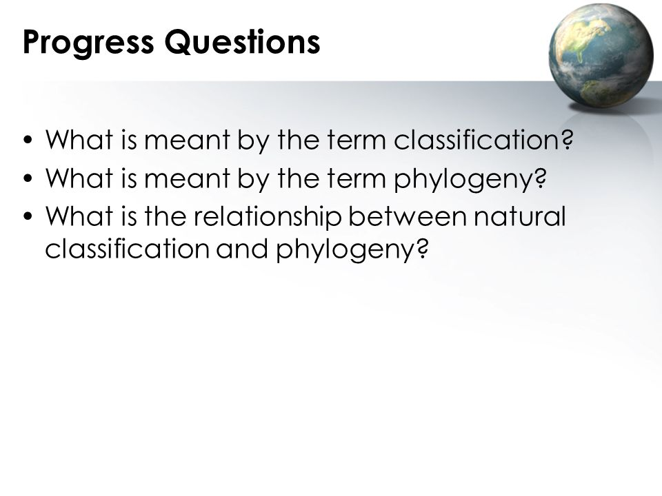 Progress Questions What is meant by the term classification