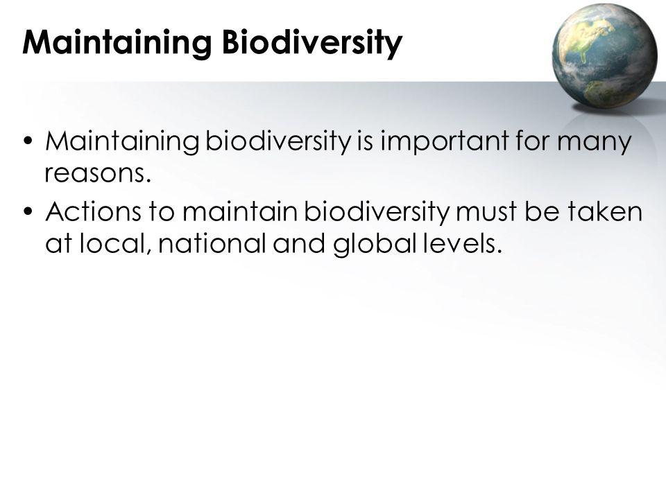 Maintaining Biodiversity