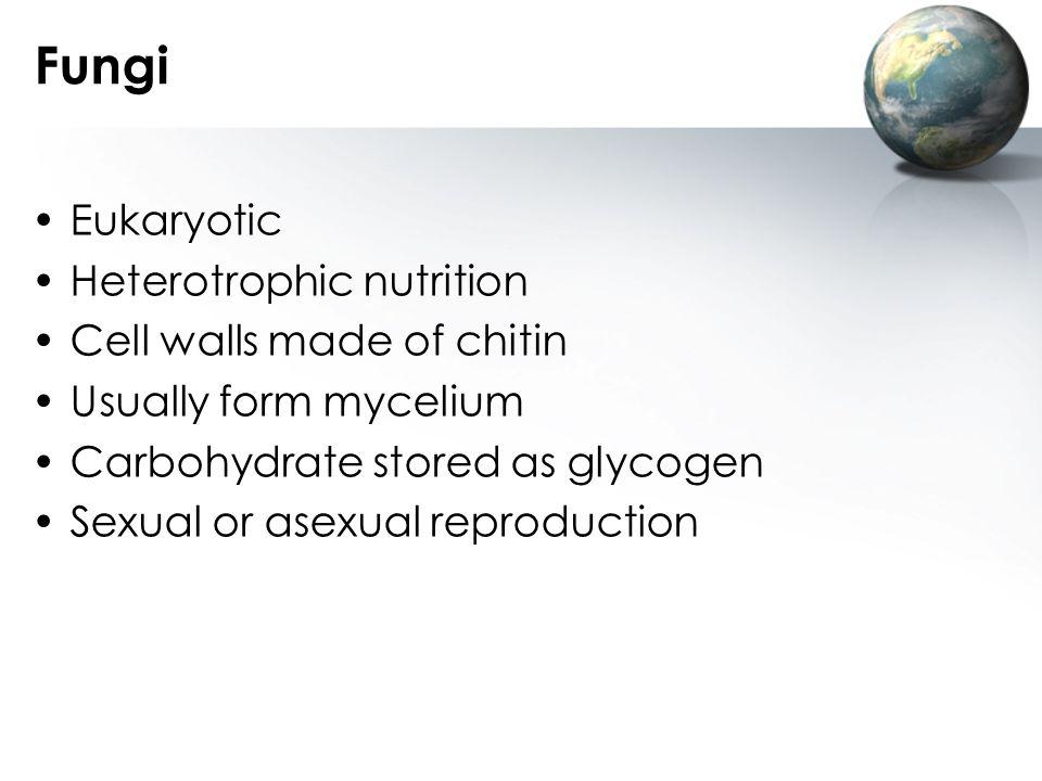 Fungi Eukaryotic Heterotrophic nutrition Cell walls made of chitin