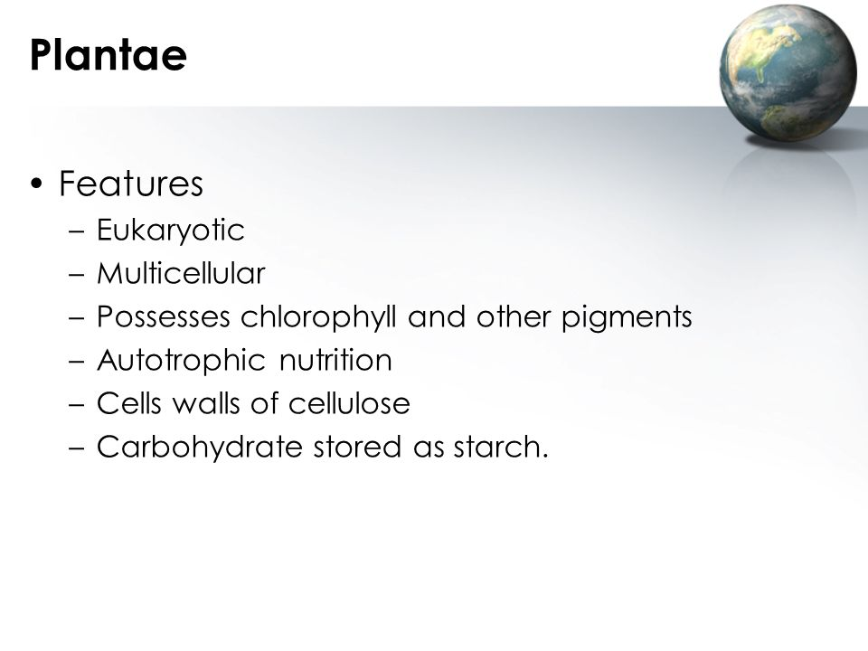 Plantae Features Eukaryotic Multicellular