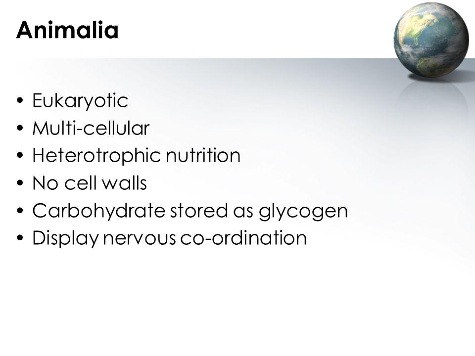 Animalia Eukaryotic Multi-cellular Heterotrophic nutrition
