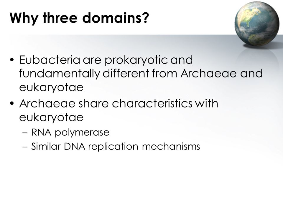 Why three domains Eubacteria are prokaryotic and fundamentally different from Archaeae and eukaryotae.
