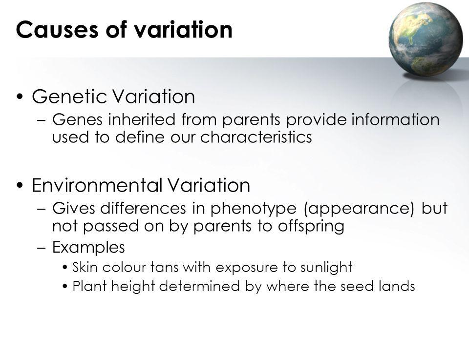 Causes of variation Genetic Variation Environmental Variation