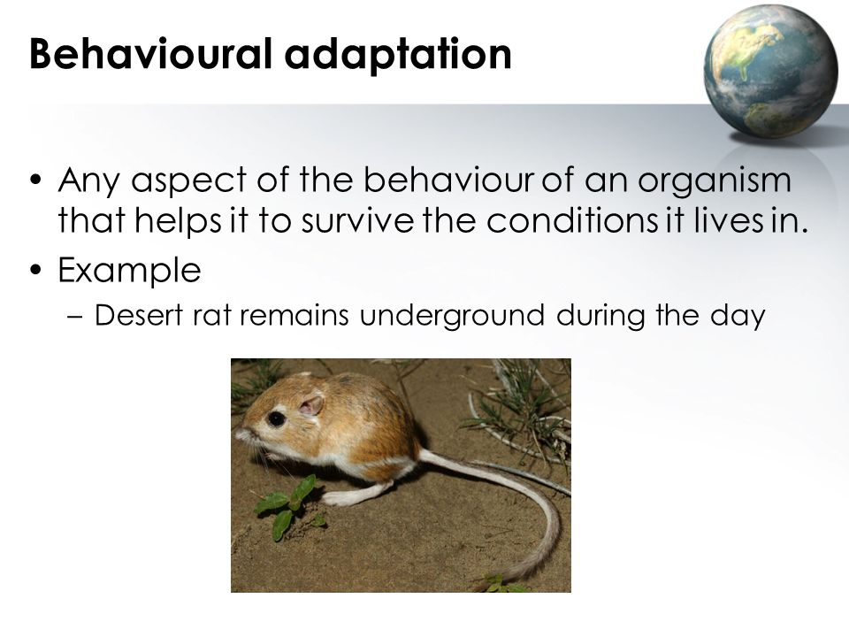 Behavioural adaptation