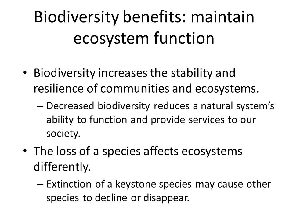 biodiversity should be maintained in our ecosystems While attempts to value our ecosystems in financial terms are difficult, the role  that natural ecosystems play in maintaining human life is currently irreplaceable.