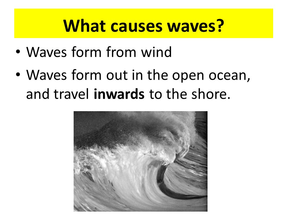 Waves, Currents, and Tides - ppt download