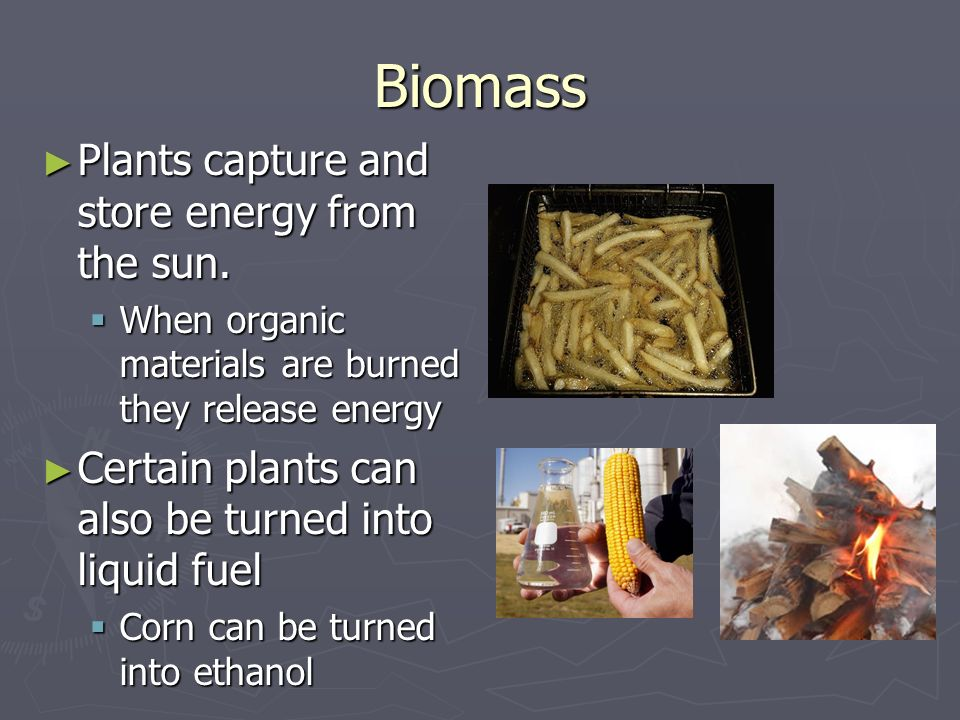 Biomass Plants capture and store energy from the sun.