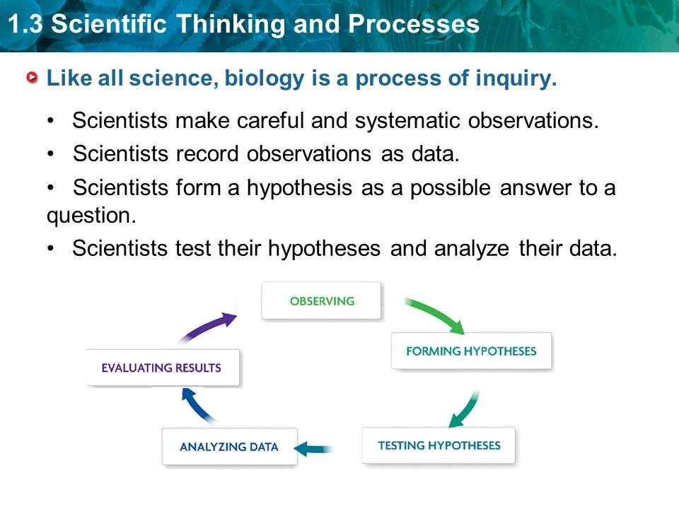 Guiding Question: How do scientists answer questions? - ppt download