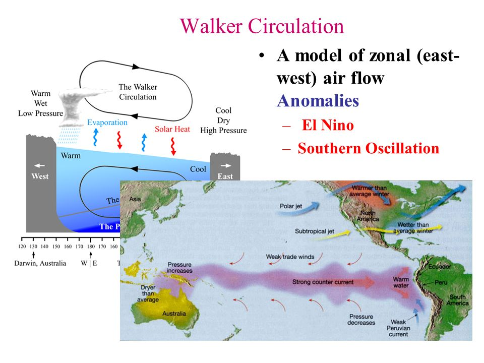 "the cause of the el nino and the many biological changes that occurs A news article also appeared in the japan times on 24 july 2004 under the heading ""'mock el nino  el niño modoki occurs  el niño modoki events appear to."