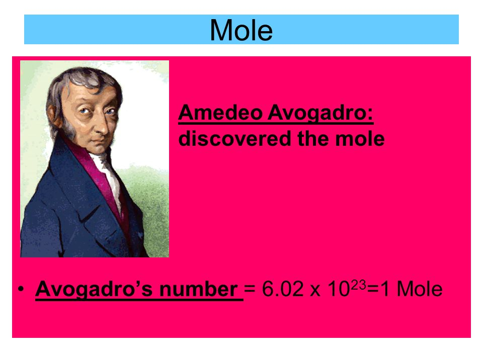 a biography of avogadro Definition of avogadro in the audioenglishorg dictionary meaning of avogadro who is/who was avogadro proper usage of the word avogadro information about avogadro in the audioenglishorg dictionary, synonyms and antonyms.