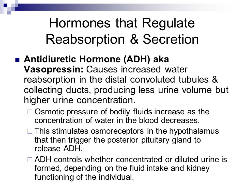 does adh favor the formation of dilute or concentrated urine Physioex 90 exercise 9 activity 6 questions sammarko wrote 2 years ago  does adh favor the formation of dilute or concentrated urine explain why 6 which hormone (aldosterone or adh) has the greater effect on urine volume  does adh favor the formation of dilute or concentrated urine explain why.