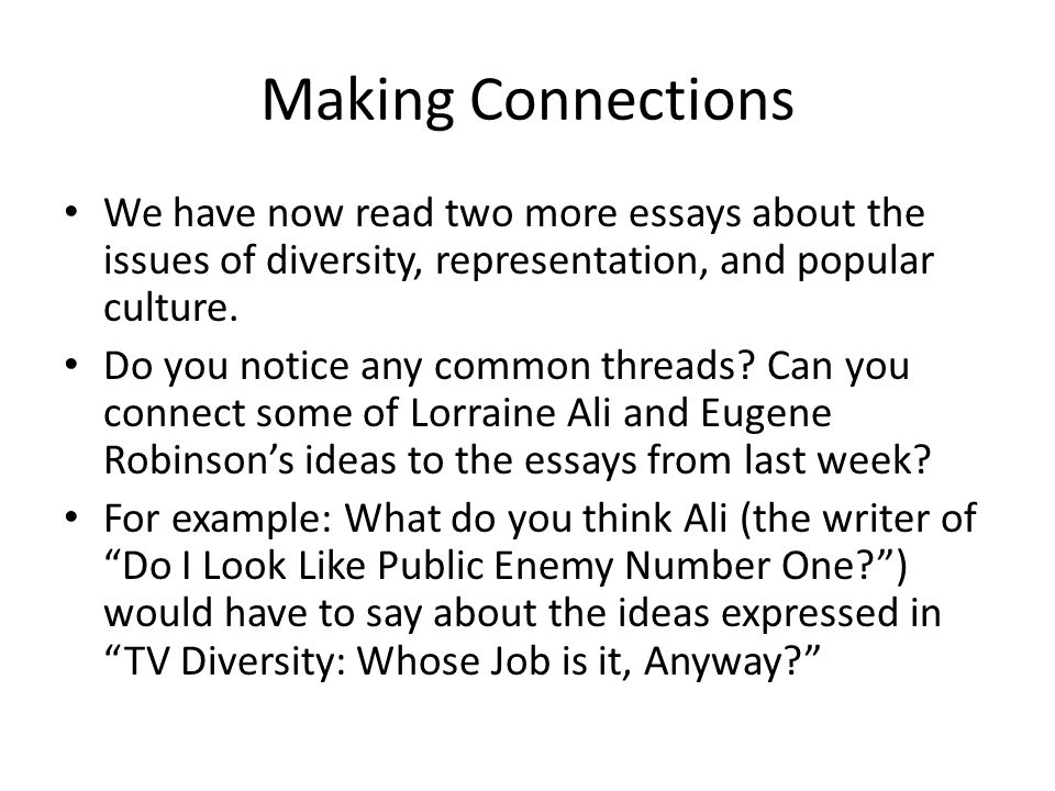 essays on diversity issues