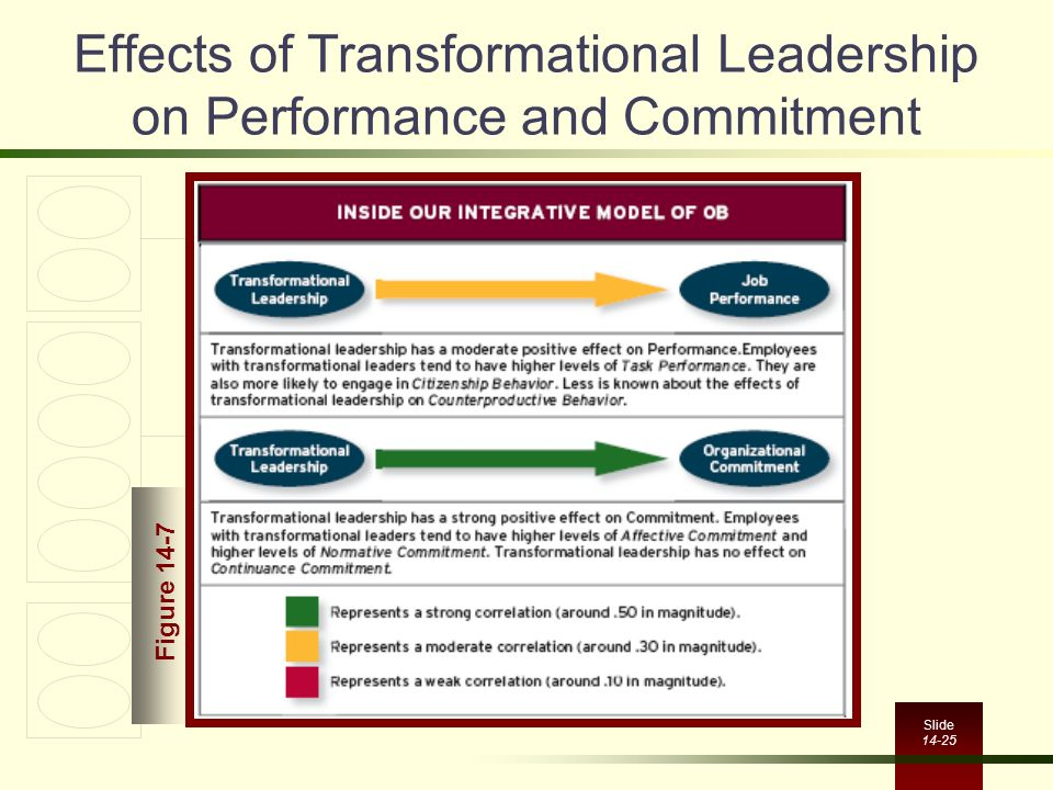Effects of Transformational Leadership on Performance and Commitment