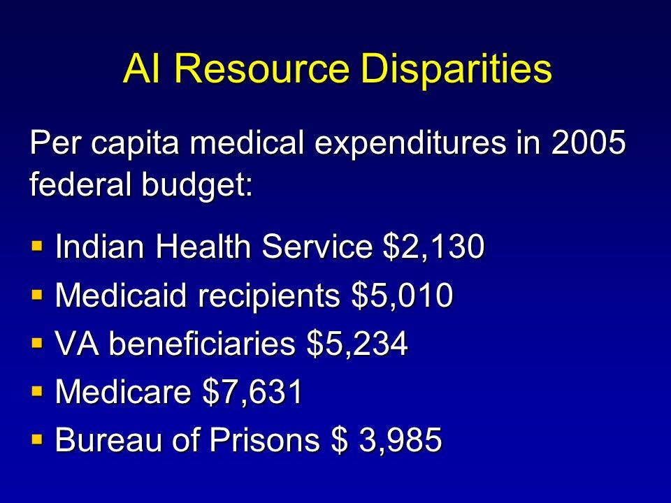 AI Resource Disparities