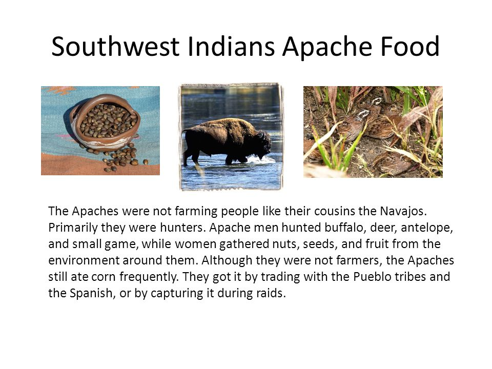 Native Americans of North America - ppt video online download