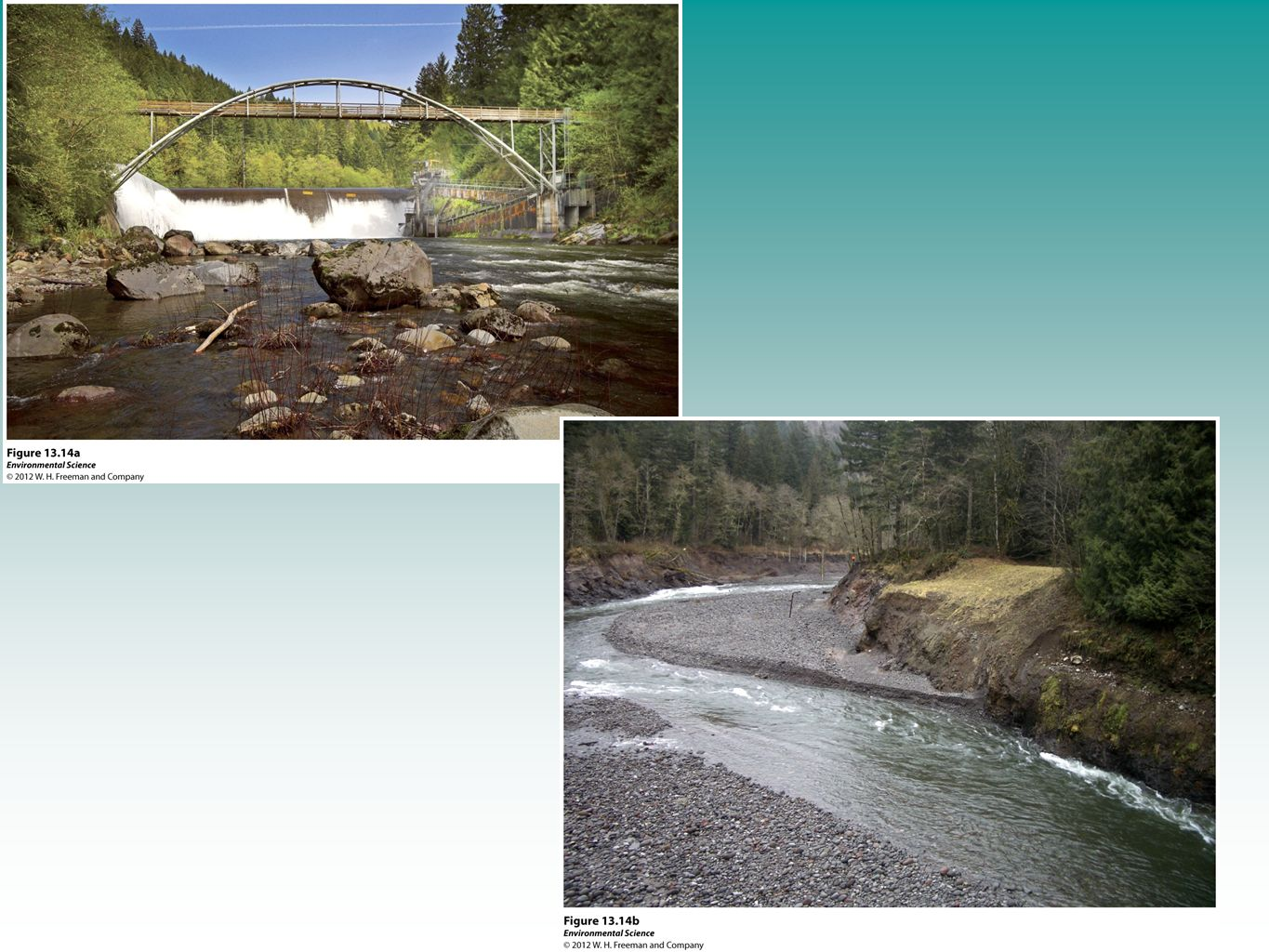 Oregon's Marmot Dam was removed in 2007