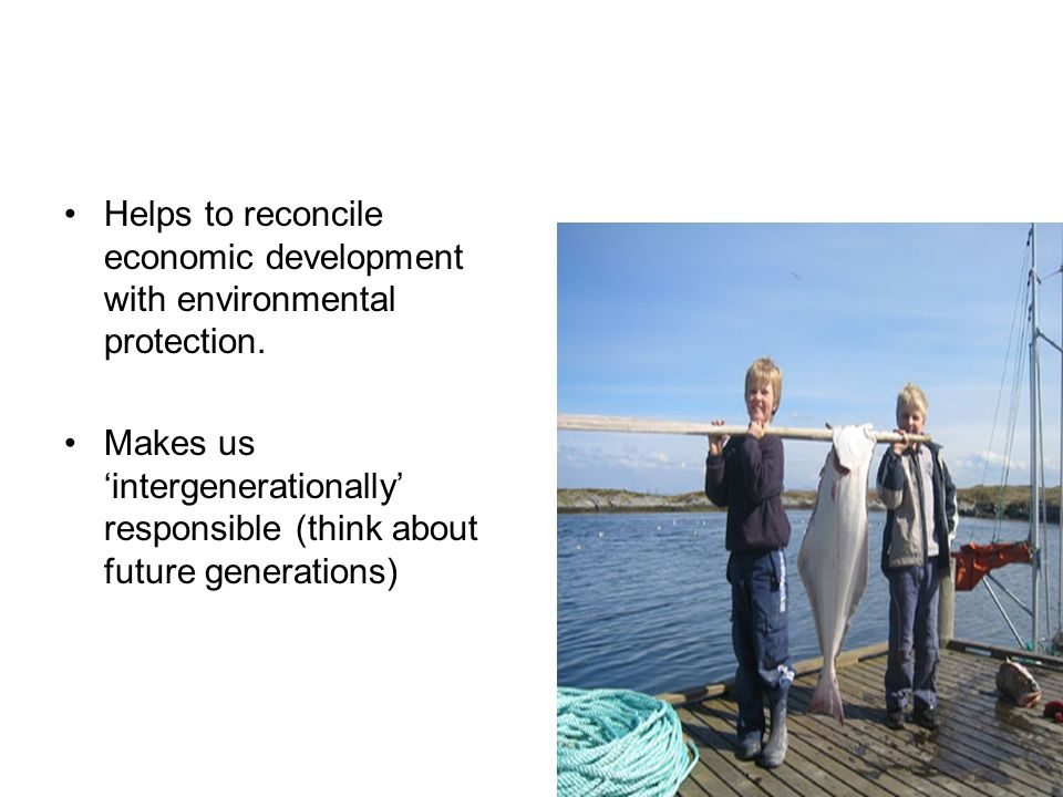 Helps to reconcile economic development with environmental protection.