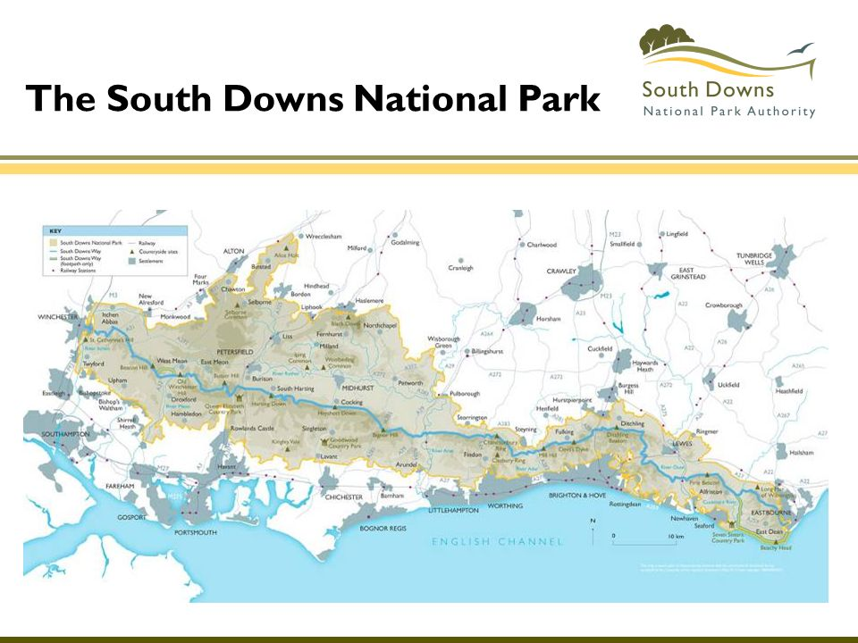 The South Downs National Park