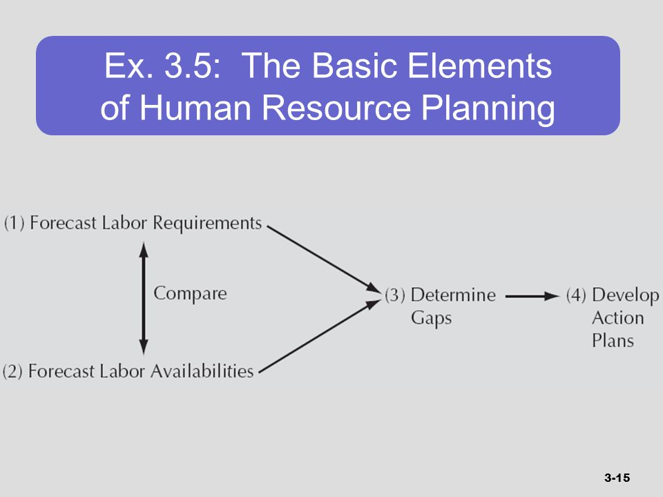 Ex. 3.5: The Basic Elements of Human Resource Planning