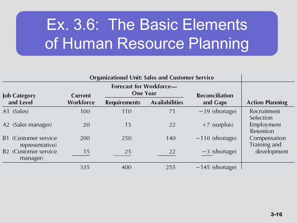 Ex. 3.6: The Basic Elements of Human Resource Planning
