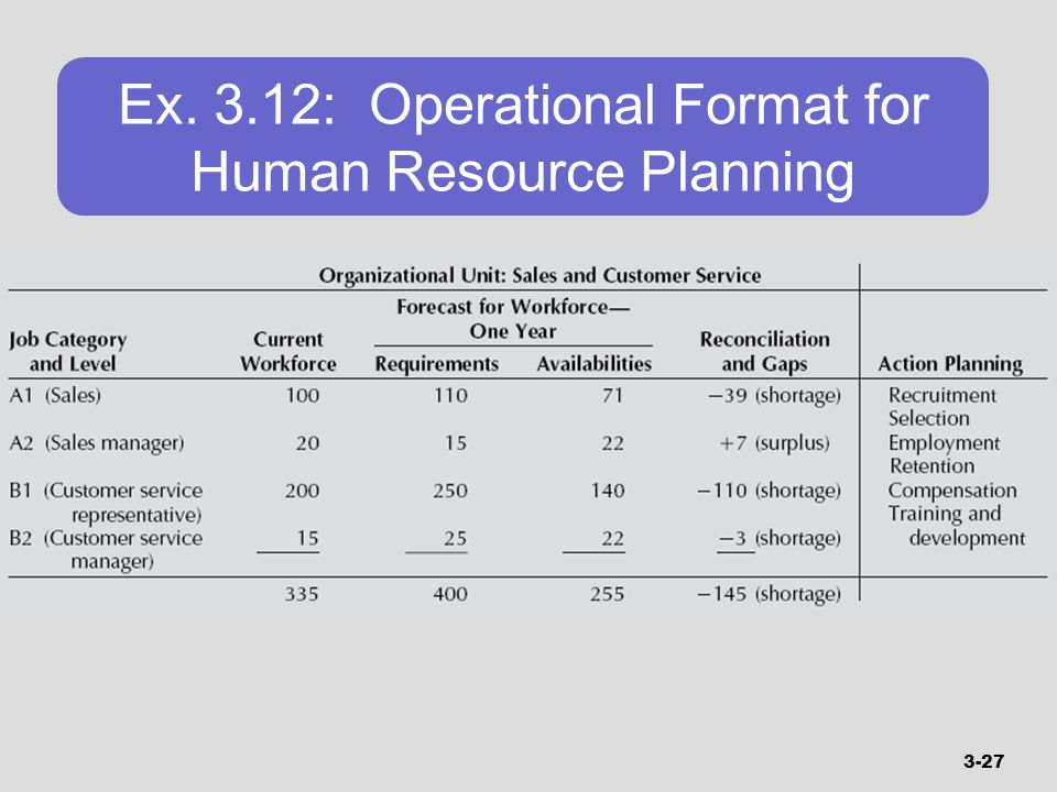 Ex. 3.12: Operational Format for Human Resource Planning
