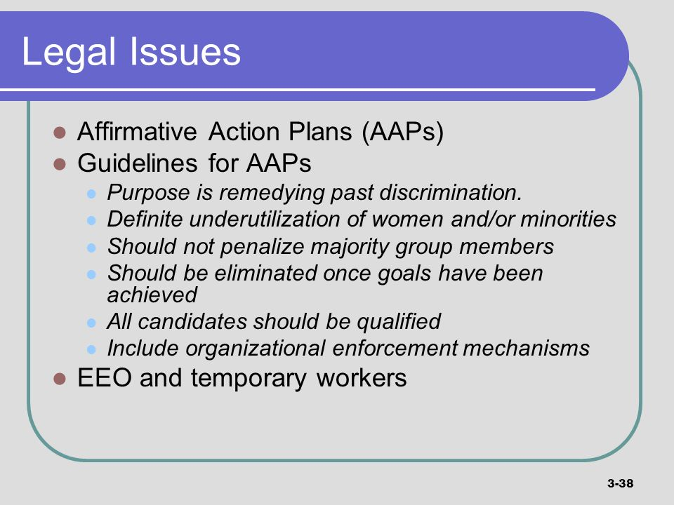 Legal Issues Affirmative Action Plans (AAPs) Guidelines for AAPs