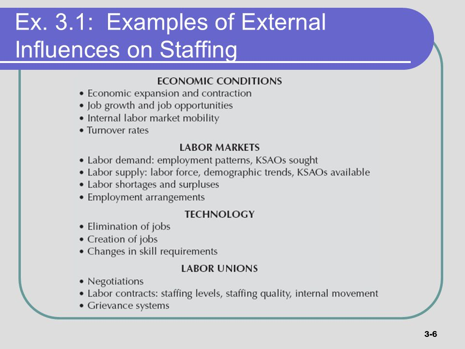 Ex. 3.1: Examples of External Influences on Staffing