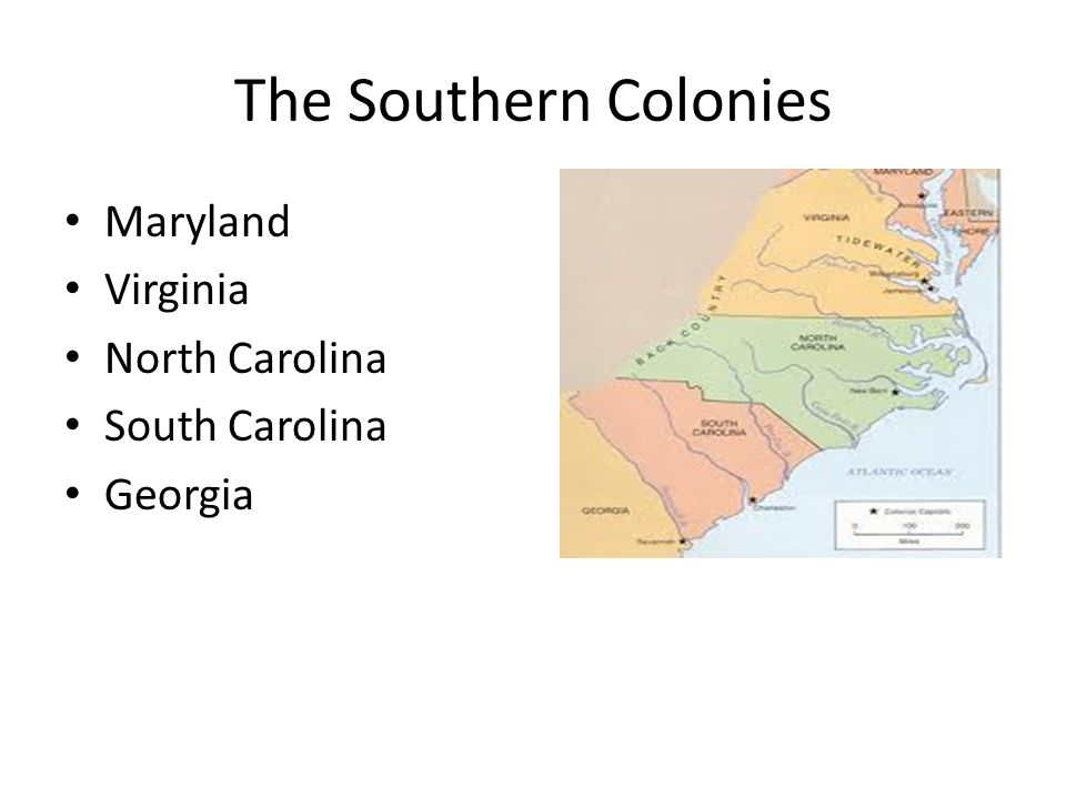 the differences betweennorthern carolina and southern carolina Reddit: the front page of north carolina was called albermarle and was settled by people from virginia moving south except it was these differences made it.