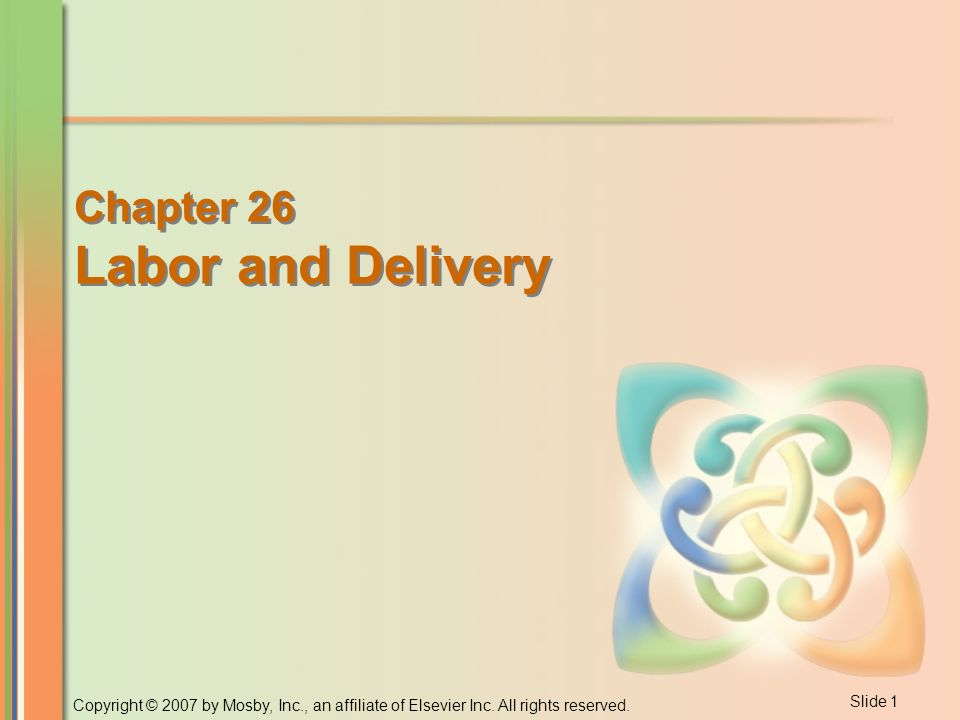 labor and delivery process pdf