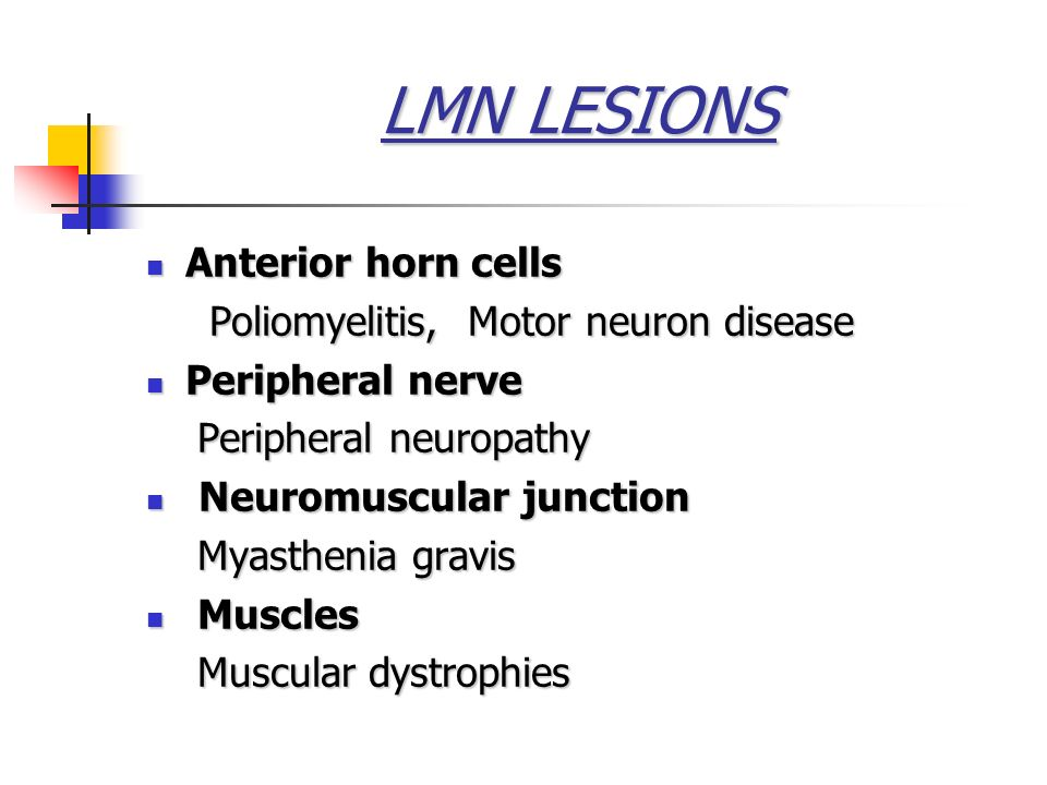 What is paraplegia paralysis of lower part of body for Lower motor neuron diseases