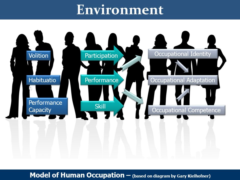 introduction to model of human occupation Model of human occupation (moho) the model emphasis that occupational behaviour is a result of the human system, the subsystem, the habitation subsystem and the environment.