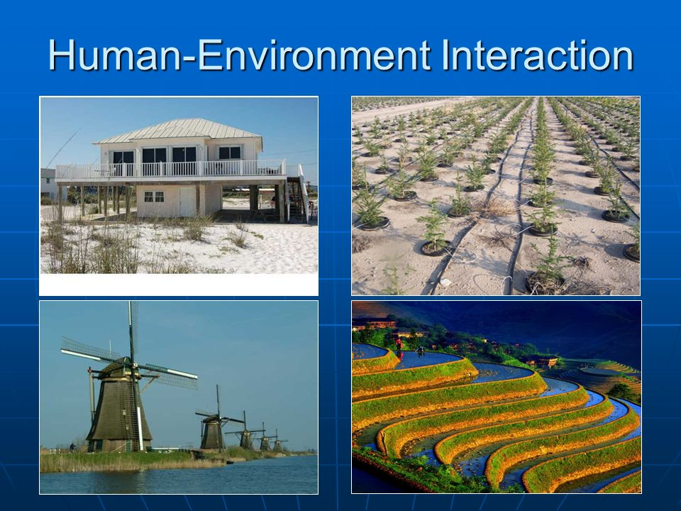 human environment interaction Human environment interactions ancient egyptians really used the lay of the land to their advantage they took advantage of anything they could, such as the nile river or the deserts.