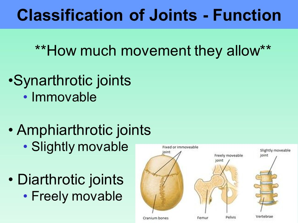 Fixed joint unity – Blog about body and health