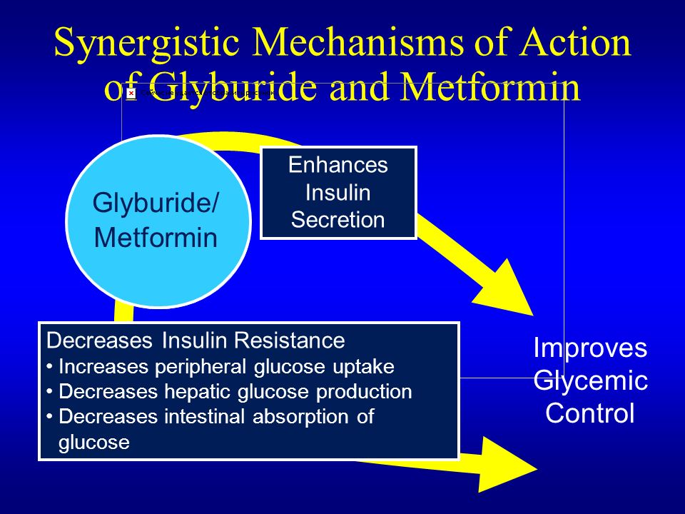 Glyburide Action