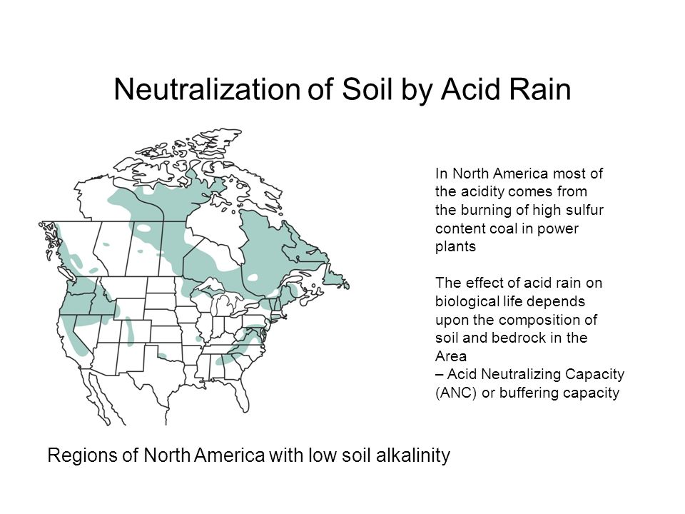 the effects of acid rain in north america In adverse effects of acid rain on the distribution of the wood thrush  hylocichla mustelina in north america (proceedings of the national academy of .
