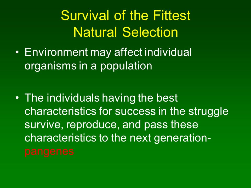 natural selection to survival of the fittest The term survival of the fittest was first used by the victorian naturalist herbert spencer as a metaphor to help explain natural selection, the central element of charles darwin's revolutionary theory of evolutionary change, first published in 1859 in his famous book, the origin of species by.